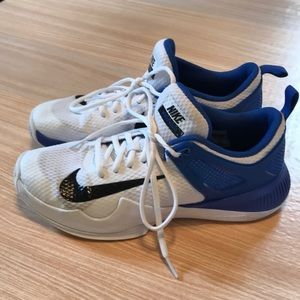 Nike Air Zoom hyper-ace Volleyball shoes